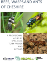 Bees, Wasps and Ants of Cheshire – A Provisional Atlas by Carl Clee, Tony Parker and RECORD