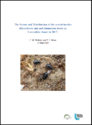 The Status and Distribution of the scarab beetles Rhysothorax rufa and Ammoecius brevis on Lancashire dunes in 2017