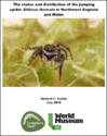 The status and distribution of the jumping spider Sitticus floricola in Northwest England and Wales